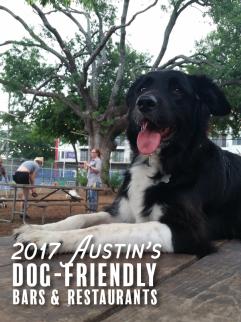 2017 Austin_s Dog-Friendly Bars & Restaurants